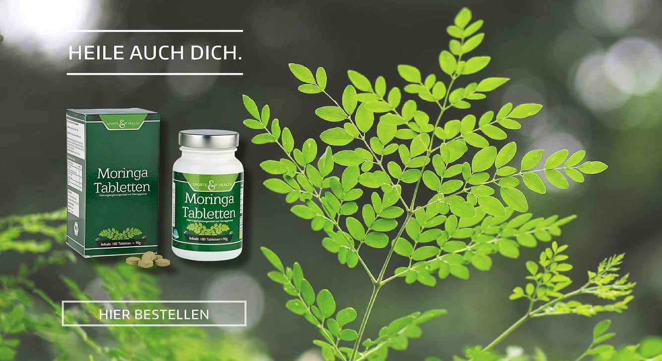 Moringa die Wunderpflanze
