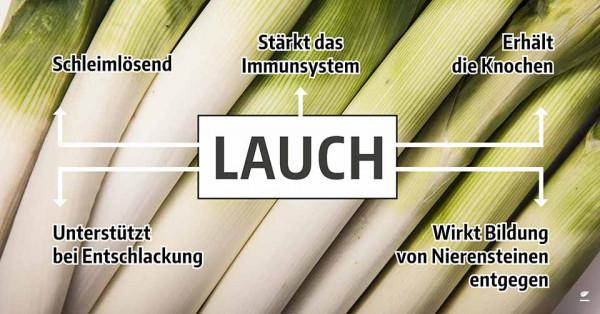lauch-gesund