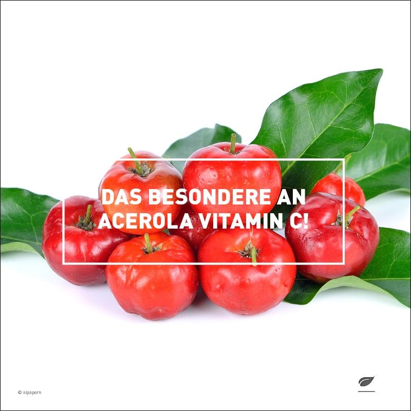 Vitamin C in Acerola Kirsche
