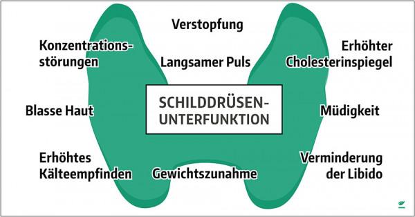 Symptome-Schilddr-usenunterfunkton